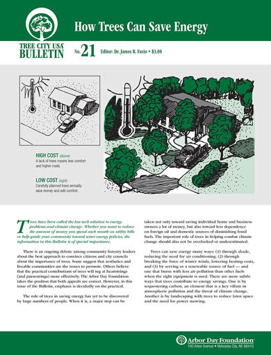#21: How Trees Can Save Energy