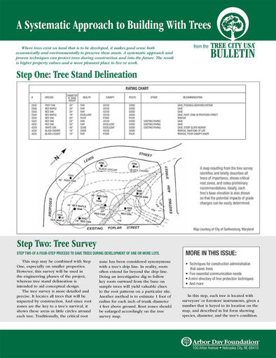 #20: A Systematic Approach to Building with Trees