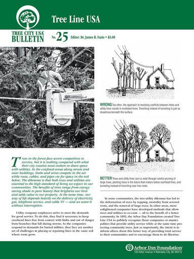 #25: Tree Line USA
