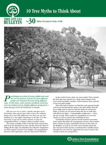 #30: Ten Tree Myths to Think About