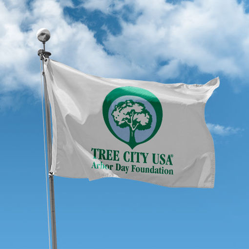 Picture of Tree City USA Flag