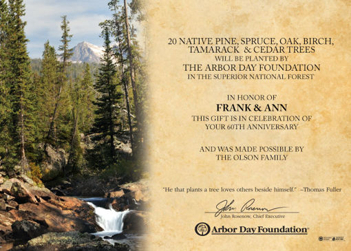 Trees in Celebration Certificate