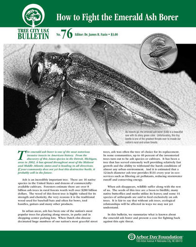 How to Fight the Emerald Ash Borer