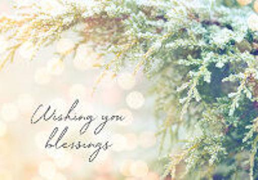 Wishing You Blessings