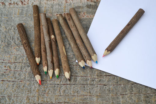 "Picture of 4"" Bundle of Twig Colored Pencils"