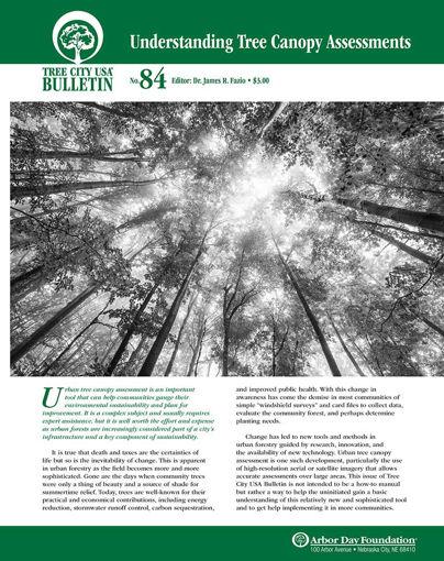 Understanding Tree Canopy Assessments