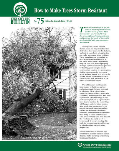 How to Make Trees Storm Resistant