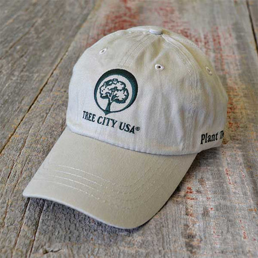 Tree City USA Cap - Tan