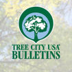 Picture of Friends of Tree City USA Membership