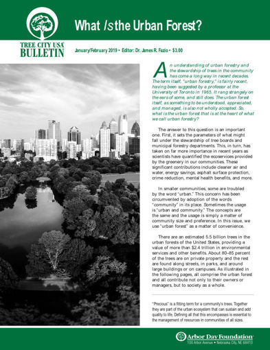 Picture of FTC Bulletin January/February 2019: What Is The Urban Forest?