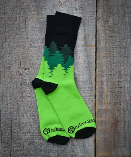 Picture of Tree Line Socks