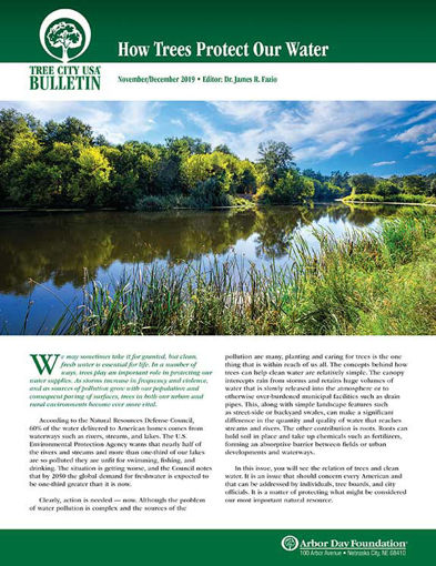Picture of Friends of Tree City USA Bulletin Nov-Dec 2019 - How Trees Protect Our Water