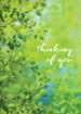 Picture of Thinking of You-Green Leaves