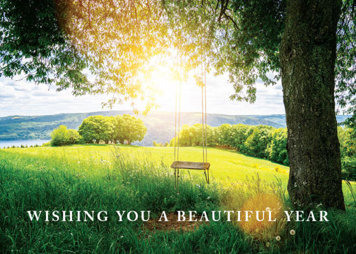 Picture of Beautiful Year-Tree Swing