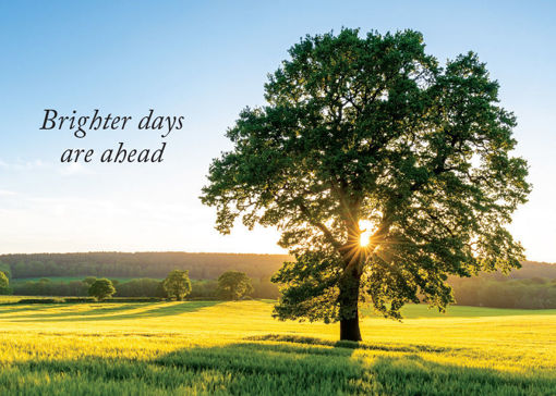 Picture of Brighter Days Are Ahead
