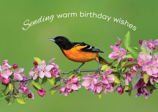 Picture of Warm Birthday Wishes