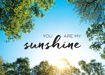 Picture of You Are My Sunshine