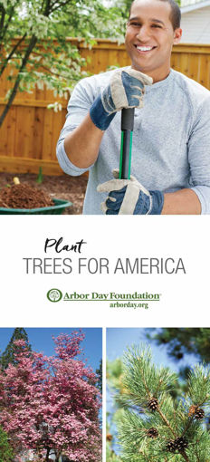 Trees for America Brochure Cover