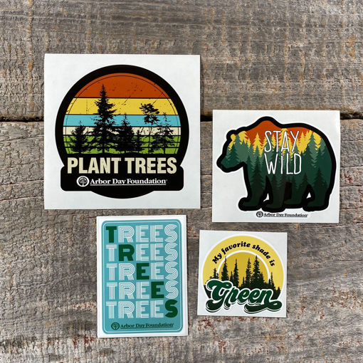 Picture of Stay Wild Vinyl Sticker Pack