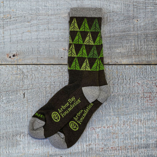 Picture of Plant Tree Socks