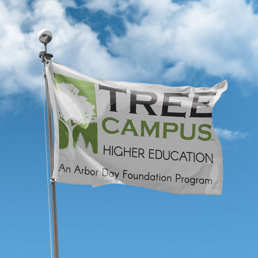Picture of Tree Campus Higher Education Flag