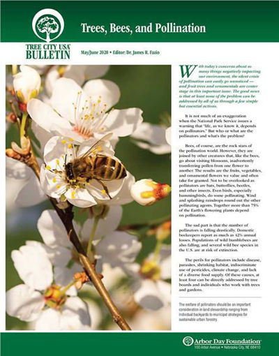 Picture of FTC Bulletin May/June 2020: Trees, Bees, and Pollination