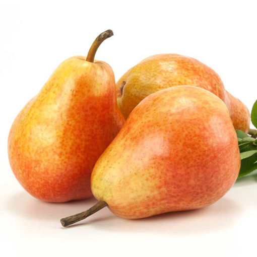 Picture of Baldwin Pear