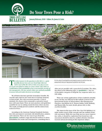 Picture of FTC Bulletin January/February 2020: Do Your Trees Pose a Risk?