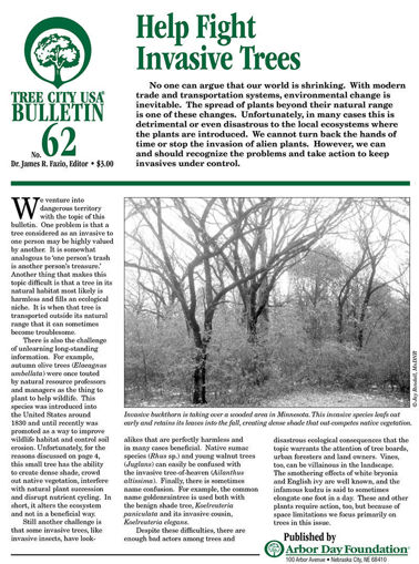Picture of #62 Help Fight Invasive Trees