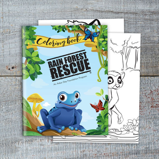 Rain Forest Coloring Book. Arbor Day Foundation - Buy Trees, Rain Forest  Friendly Coffee, Greeting Cards That Plant Trees, Memorials And  Celebrations With Trees, And More.