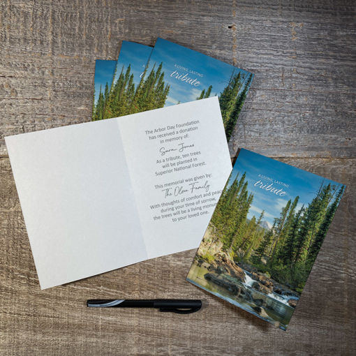 Picture of Trees in Memory Blank Honoree Cards-5 Pack