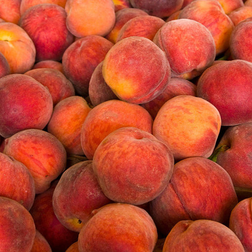 Picture of O'Henry Peach