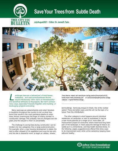Picture of FTC Bulletin Jul-Aug 2021: Save Your Trees from Subtle Death