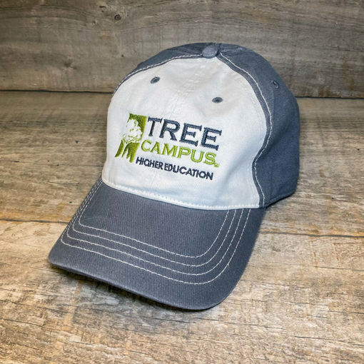 Picture of Tree Campus Higher Education Cap