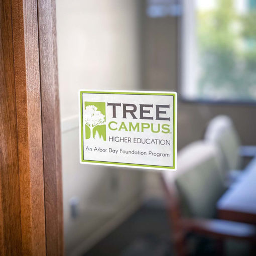 Picture of Tree Campus Higher Education Window Cling