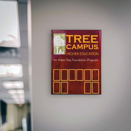 Picture of Tree Campus Higher Education Plaque